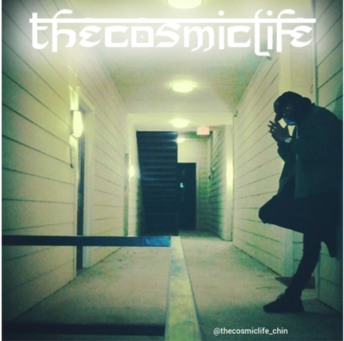 TheCosmicLife