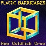 How Goldfish Grow